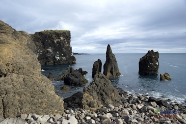 Reykjanes 8 hour Private Tour