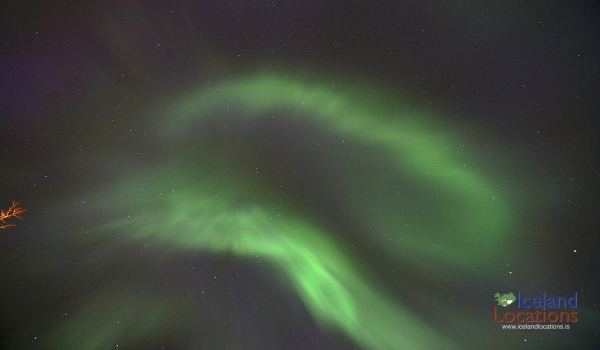 Northern Light Forecast